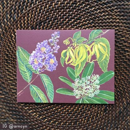 Philippine Native Trees note card 4