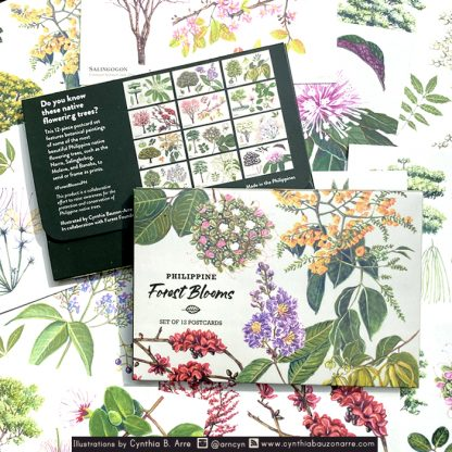 Philippine Forest Blooms Postcard Set