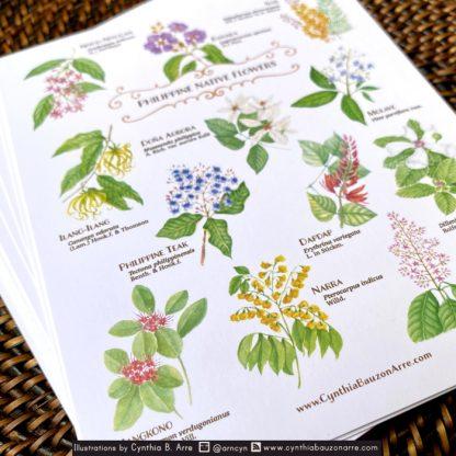 Philippine Native Flora postcards