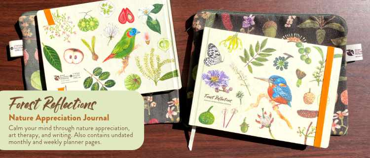 Forest Reflections Nature Appreciation Journal